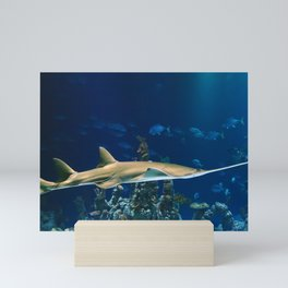 Carpenter Shark Mini Art Print
