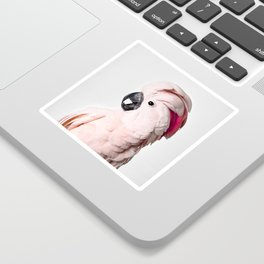 Pink Cockatoo Sticker