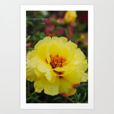 A Very Pretty Flower Art Print
