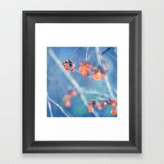 cool orange Framed Art Print