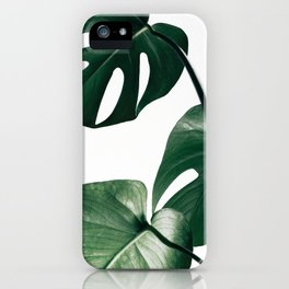 Monstera Leaf Print, Botanical Print, Botanical Art iPhone Case
