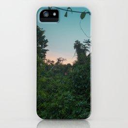 Jungle Sunset iPhone Case