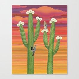 gila woodpeckers on saguaro cactus Canvas Print