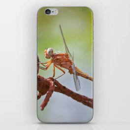 Nature in pastel shades iPhone Skin