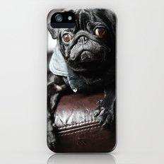 Pug iPhone (5, 5s) Slim Case