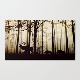 Forest night deer Canvas Print