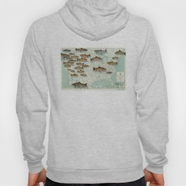 United States Trout Map (1999) Hoody