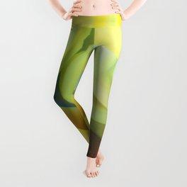 Colorful Curves Leggings