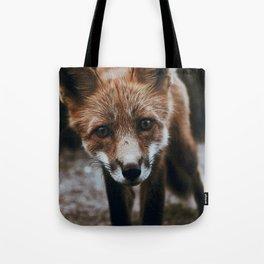 Curious Fox / Alaska Tote Bag