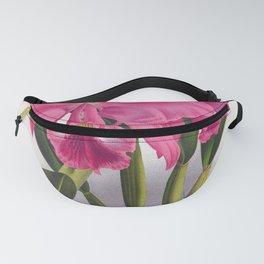 Cattleya Labiata Vintage Deep Pink Orchids Fanny Pack