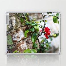 Wee Red Flowers Laptop & iPad Skin