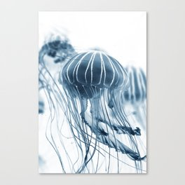 Minimalist jellyfish - abstract art Canvas Print