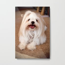 Fluffy Puppy Metal Print