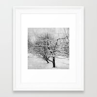 blankets Framed Art Prints featuring Blankets of Snow by Bella Blue Photography