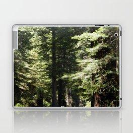 Humboldt State Park Road Laptop & iPad Skin