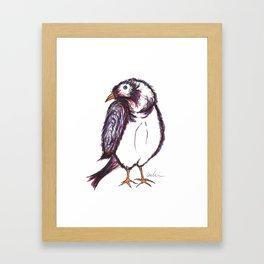 he was a shy sparrow Framed Art Print