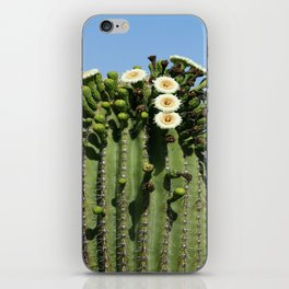 Beautiful Saguaro Blossoms iPhone Skin