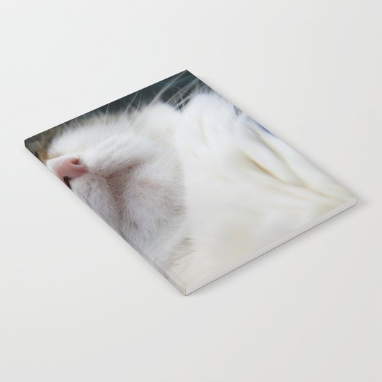 Cat I Notebook