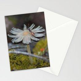 Mushroom on Grasshopper Stationery Cards