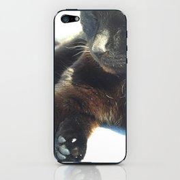 Cat Closeup iPhone Skin