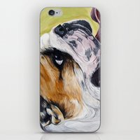 english bulldog iPhone & iPod Skins featuring English Bulldog  by WOOF Factory