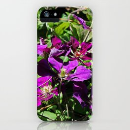 Lingering Effects iPhone Case