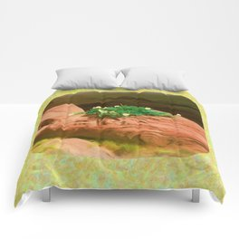 Datura Cavern Comforters