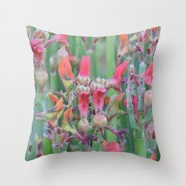 Succulent Array Throw Pillow