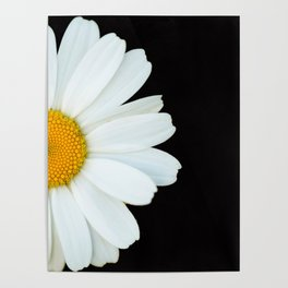 Hello Daisy - White Flower Black Background #decor #society6 #buyart Poster
