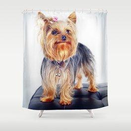 Super Pets Series 1 - Super Treble Shower Curtain