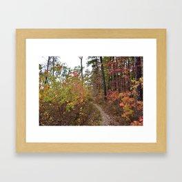 A Walk in the Fall Framed Art Print