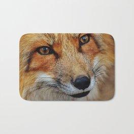 wild fox close up Bath Mat