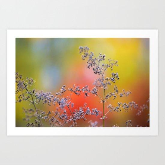 Flowers in autumn Art Print