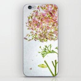 Botanical Blueprints iPhone Skin