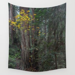 Autumn In The Redwoods Wall Tapestry