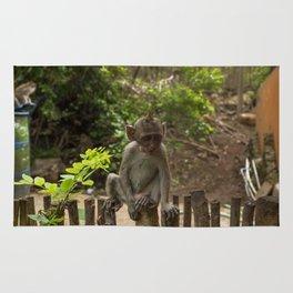 Wise baby monkey Rug