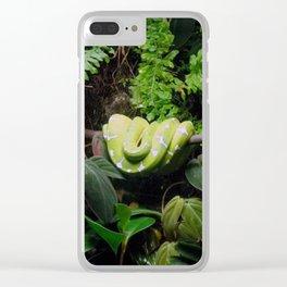 Boa Clear iPhone Case