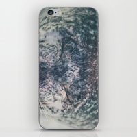 seal iPhone & iPod Skins featuring Seal  by Chelle Wootten