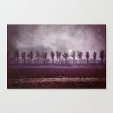 These days... Canvas Print