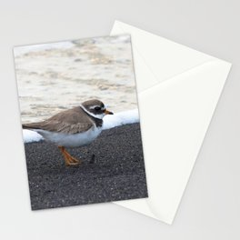 Watercolor Bird, Ruddy Turnstone 04, Heimaey, Iceland Stationery Cards
