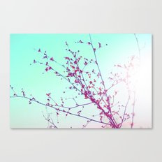 Lovely Days  Canvas Print