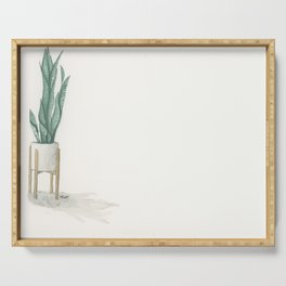 Potted Plant in White Space Serving Tray