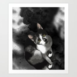 Gypsy Da Fleuky Cat and the Black Starry Night Art Print