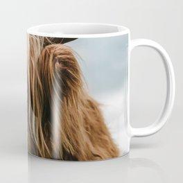 Scottish Highland Cattle - Animal Photography Coffee Mug