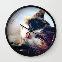 cat lying Wall Clock