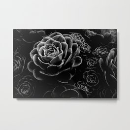 Succulents in the Shadows Metal Print