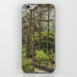 PHOTOGRAPHY / TREE 03 iPhone Skin