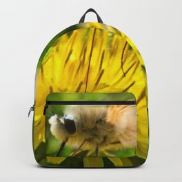 Insect and Flower Backpack