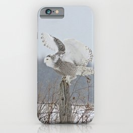 Perfect landing iPhone Case