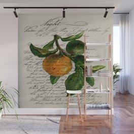 Shabby French botanical print tangerine clementine mandarin orange Wall Mural
